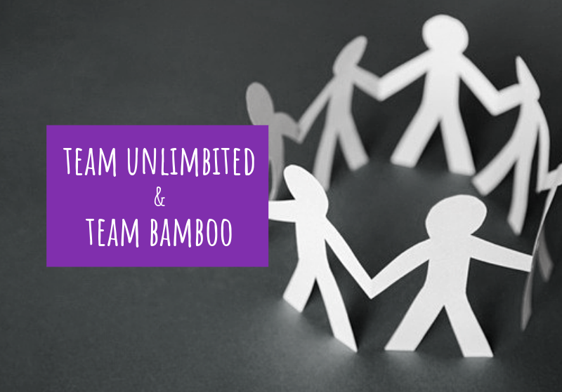 Team UnLimbited and Team Bamboo