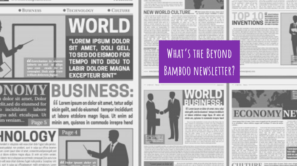 What's the Beyond Bamboo newsletter?
